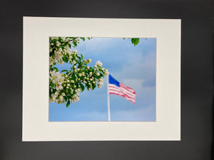 Flag & Flower photo print- 11x14