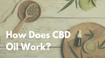 Your Guide to How CBD Oil Works