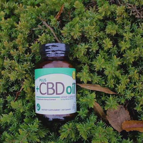 Plus CBD Green CBD Capsules