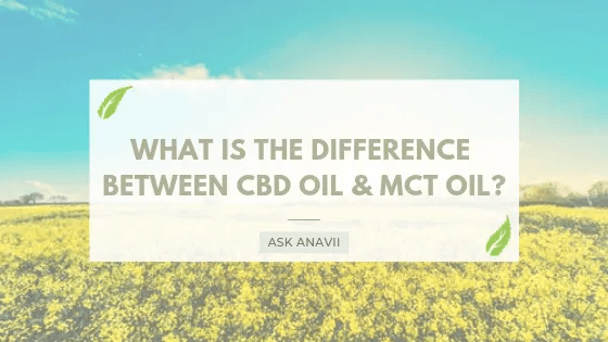 cbd oil vs hemp oil