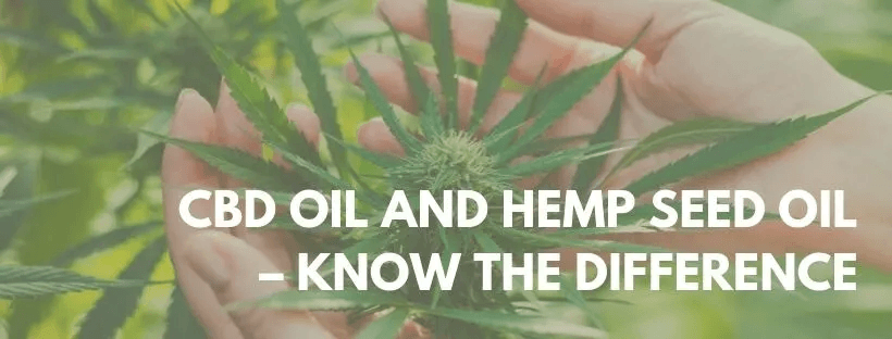 cbd and hemp oil