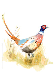 South Dakota Pheasant Art