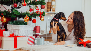 Holistic Gifts for Your Pet