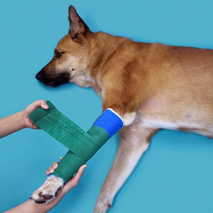 Splints with Padding - Large Animal Kit with Heater