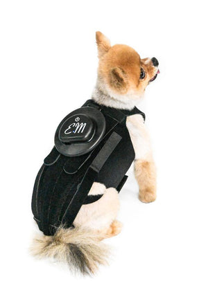 EMbrace L'il Back System (EMpower + L'il Back Bracer) - Animal Ortho Care