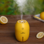 Air Humidifier USB - CandM Online Store