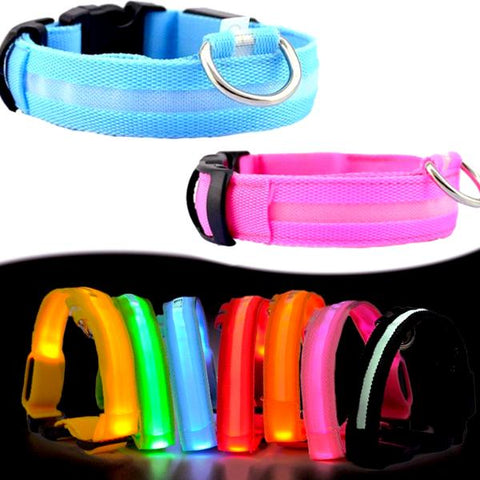 Pet Dog Collar LED Leash - CandM Online Store