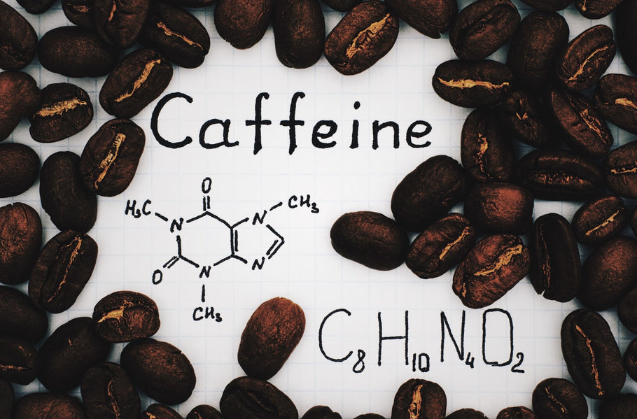 How Caffeine Actually Affects Your Brain and Body