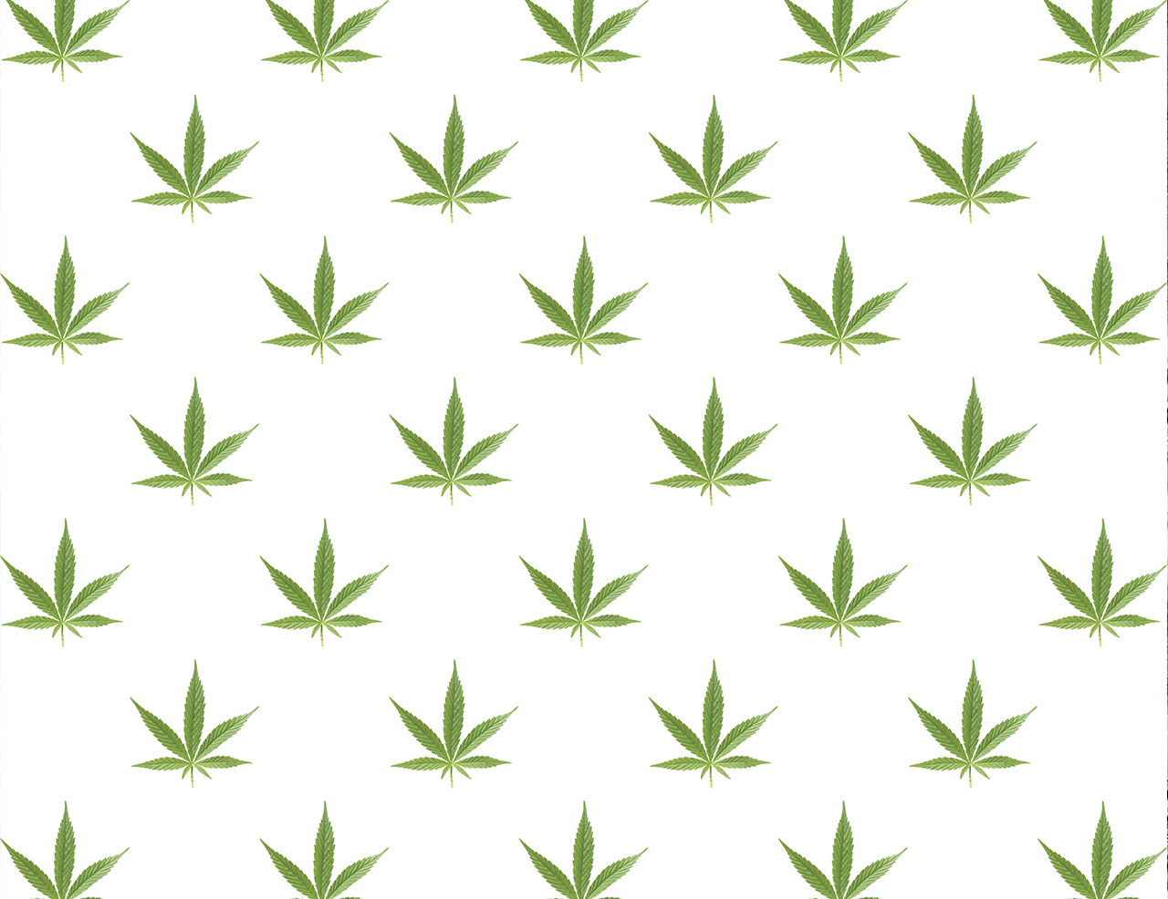 Weed leaf gift wrap paper gorilla goodies for Weed leaf template