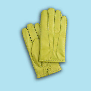 Nappa Leather Gloves VLG113W