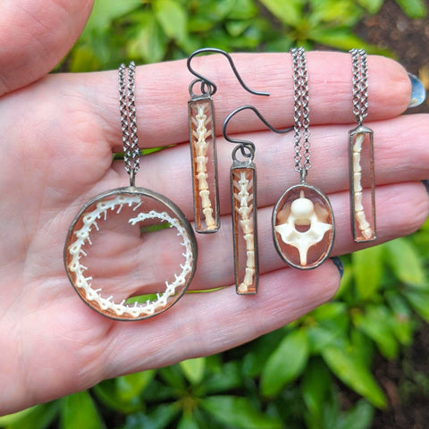 various, geometric shaped shadowbox necklaces and earrings that have real snake, mouse, and chameleon spines and vertebrae encased within glass and metal.