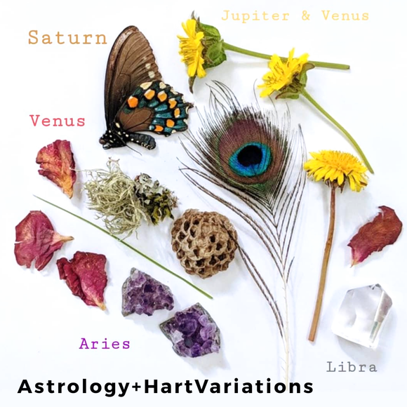 Follow Up Consultation  - Astrology Reading