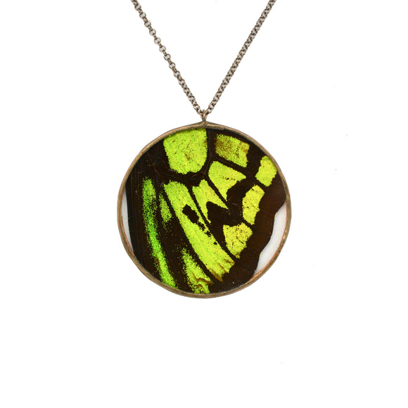 Birdwing Butterfly Necklace {One of a Kind}