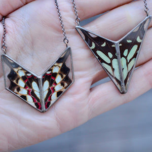 Swordtail Butterfly Alchemy Necklace {One of a Kind}