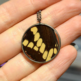 Rondure Giant Swallowtail Necklace {One of a Kind}