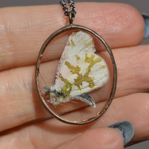 Oval Butterfly Shadowbox Necklace {One of a Kind}