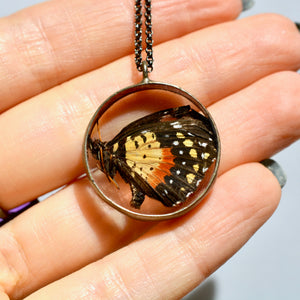 Encircled Butterfly Necklace {One of a Kind}