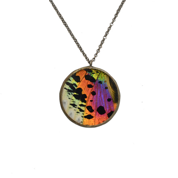 Rondure Sunset Moth Necklace