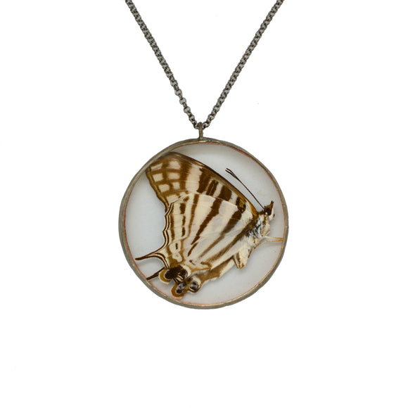Striped Butterfly Shadowbox Necklace {One of a Kind}