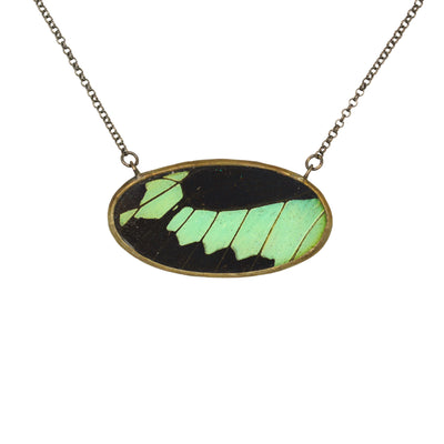 An oval shaped necklace created with a mint green and black butterfly wing hangs against a white background.