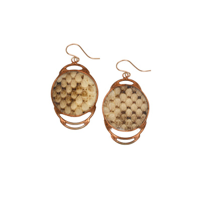 Rose gold, copper tone earrings embracing a circlular piece of warm brown snakeskin shed shown against a white background.