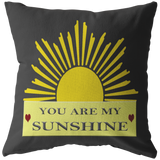 YOU ARE MY SUNSHINE PILLOW (GRAY)