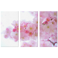 Japanese Flower Canvas Set