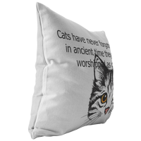 Cat Pillow with Video Scan