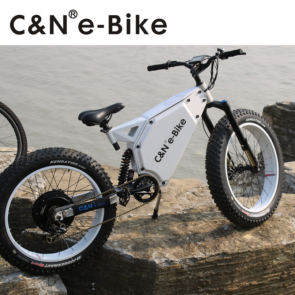 Hottest!!!48v 1000W Snow fat E-bike Electric Mountain Bike/Electric Bike/Electric bicycle - Trivoshop