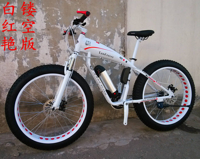 electric snow EBIKE
