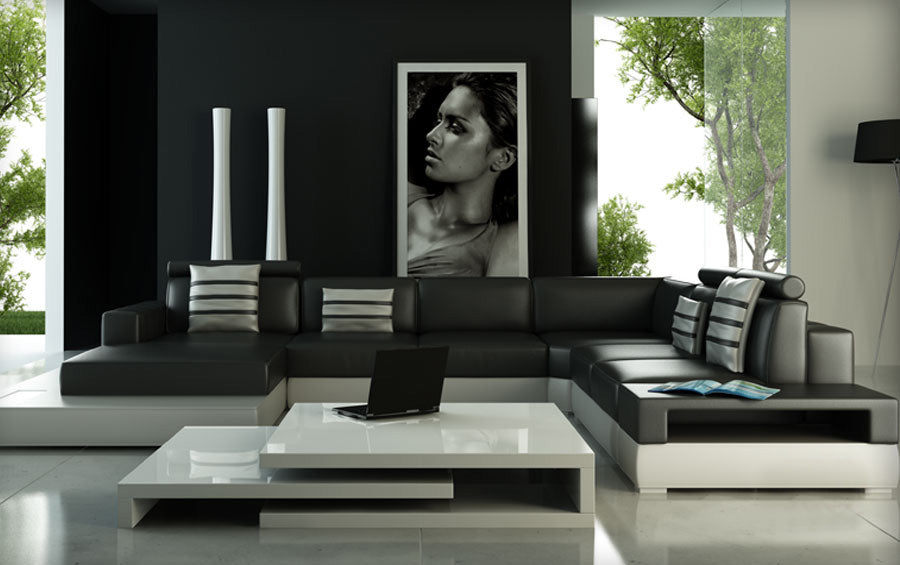 modern leather sofa with white & black color