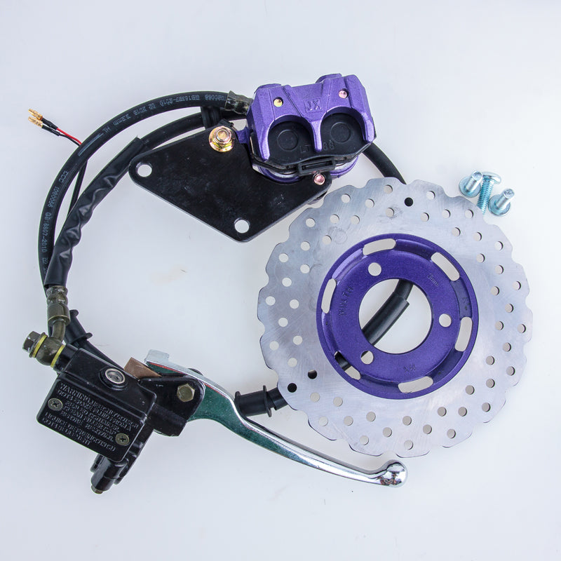 STARPAD For Thunder Wang electric motorcycle motorcycle front disc brakes front disc brakes New hydraulic disc - Trivoshop