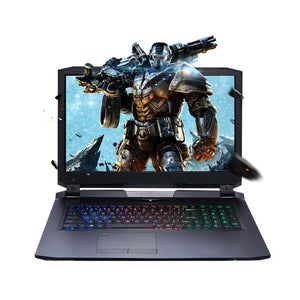 "Machenike PX780-T6K Gaming Laptop Notebook 17.3"" FHD IPS Screen i7-7700K Quad Core Processor GTX1080 8G Dedicated Card 16G/512G"