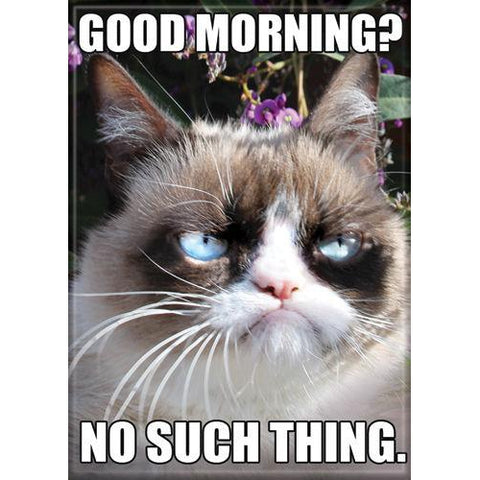 Grumpy Cat: Good Morning Magnet - National Comedy Center
