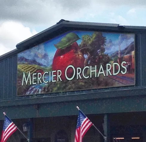 Feature Farm: Mercier Orchards