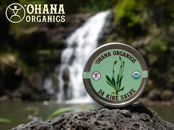 Da Kine Salve - Certified Organic Our certified Organic Salve is a superb skin softener made with FIVE healing herbs. It does wonders for hard-working hands and feet and is excellent for minor cuts and scrapes.