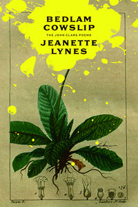 Book Cover: Bedlam Cowslip: The John Clare Poems, Jeanette Lynes