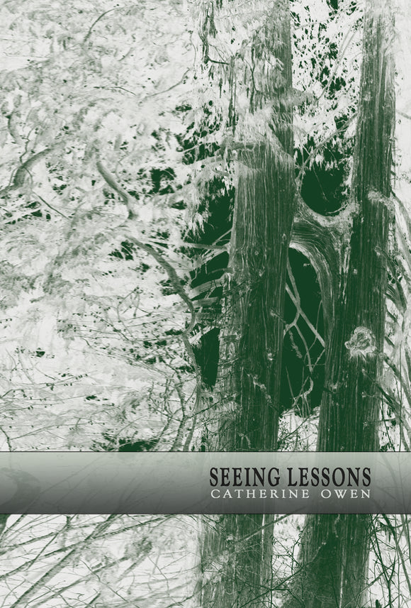 Seeing Lessons