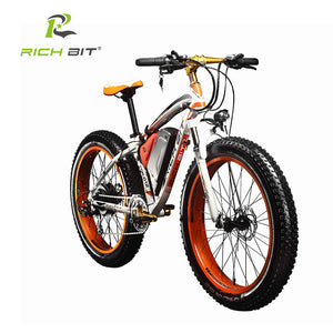 RichBit New Snow Electric Bike 48V 1000W, 17Ah Lithium Battery 21 Speed Electric Mountain/Road Bike