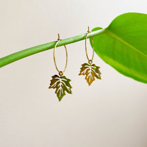 Maple Leaf Hoop Earrings - Gold