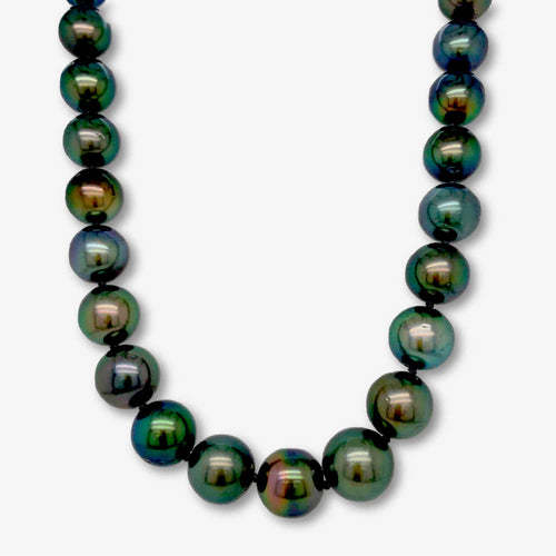 Cultured Black South Sea Tahitian AA Grade Pearl Strand 18 inch Necklace | Blacy's Fine Jewelers