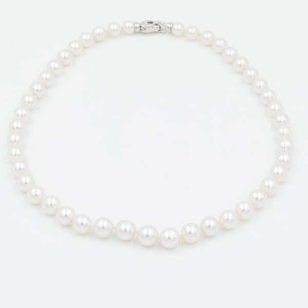 Freshwater Pearls | Blacy's Fine Jewelers