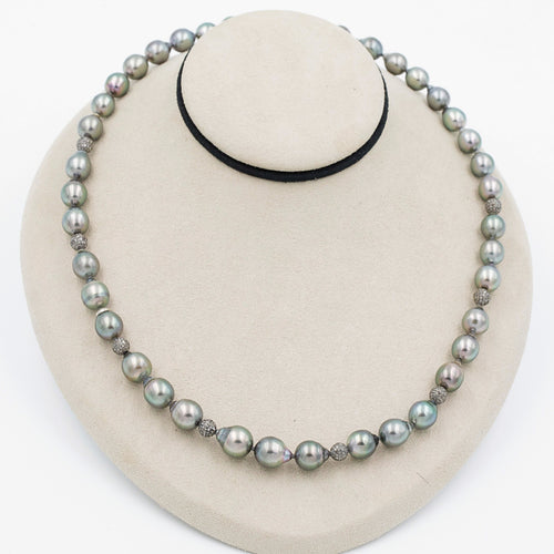 Tahitian South Sea Pearl Strand | Blacy's Fine Jewelers