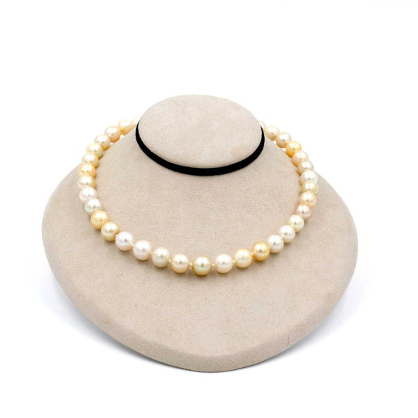 Natural Variated Golden South Sea Pearls 16 inches with Magnetic Twist Clasp | Blacy's Fine Jewelers