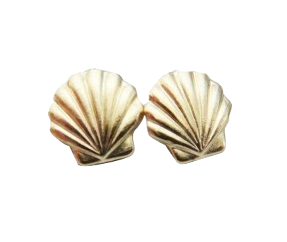 Gold Seashell Earrings