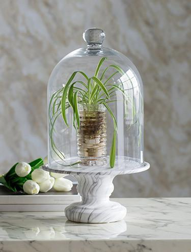 GLASS DOME MARBLE WIDE