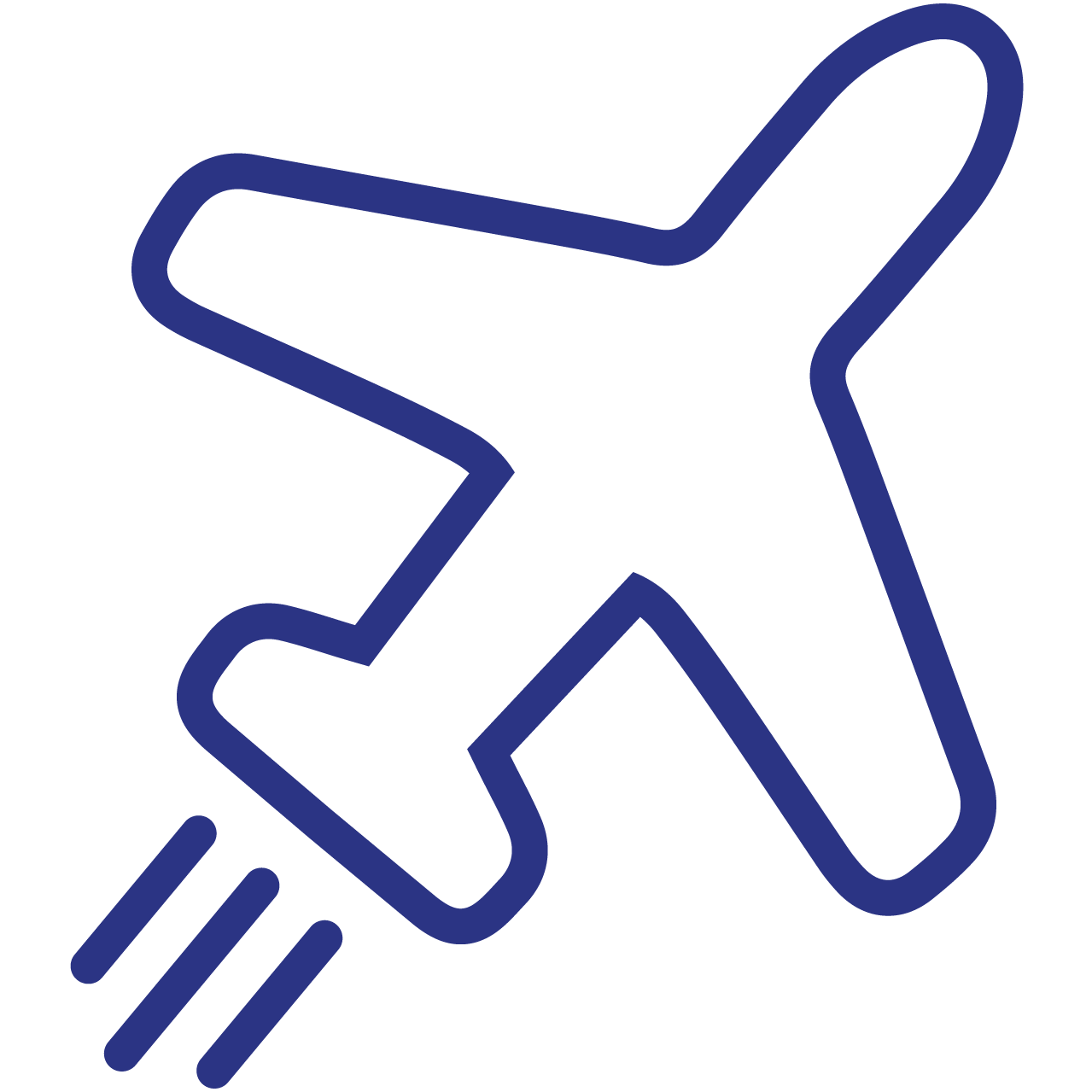 A plane which represents quick shipping