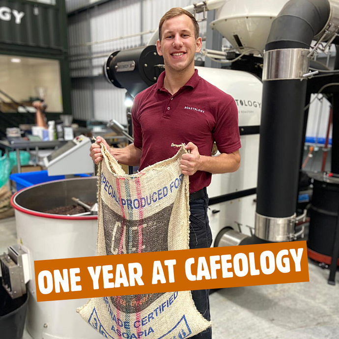 One Year at Cafeology as Coffee Production Specialist