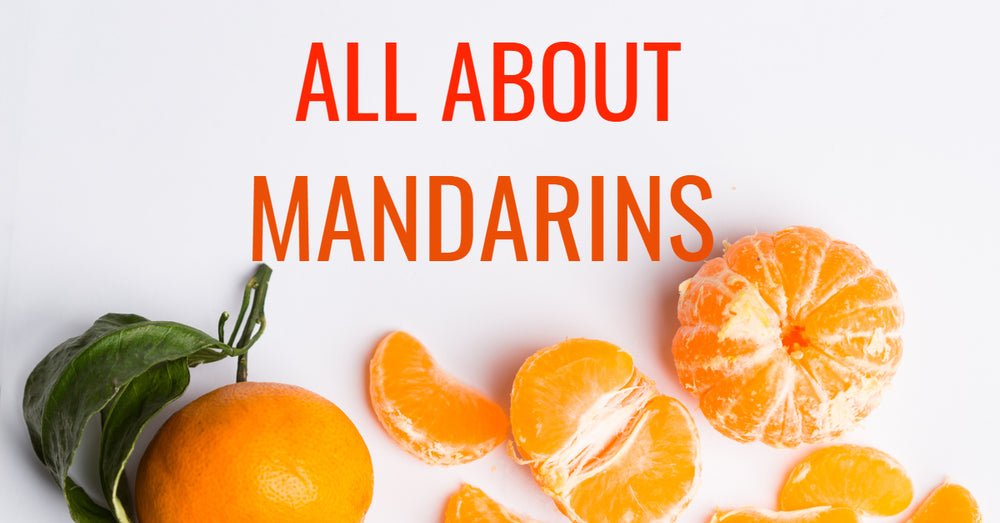 All About Mandarins Featured
