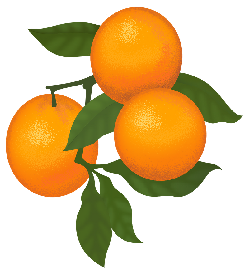 60 Varieties Of Citrus Fruit Trees